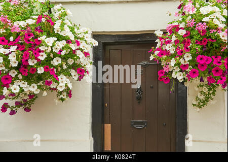 Hanging baskets outside a doorway entrance into a white walled building. - Stock Image