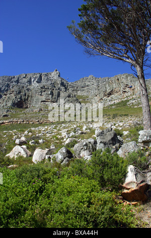 Table Mountain and Cableway, Cape Town, Western Cape Province, South Africa. - Stock Image