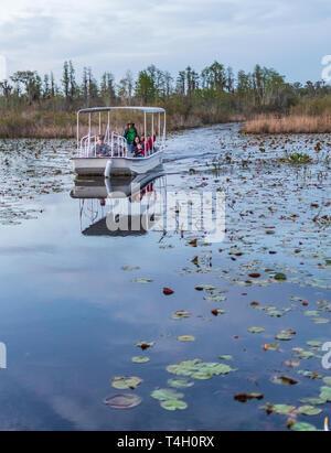 Okefenokee Swamp, Folkston, GA, USA-3/29/19:  A tourist skiff in the Okefenokee Swamp. - Stock Image