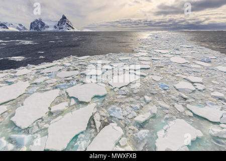 Sea ice and Lemaire Channel entrance, between Kiev Peninsula and Booth Island, evening light, Antarctic Peninsula, Antarctica, Polar Regions - Stock Image
