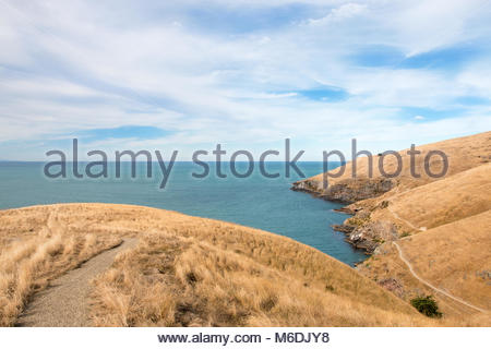Godley Head walking track, Christchurch, New Zealand - Stock Image