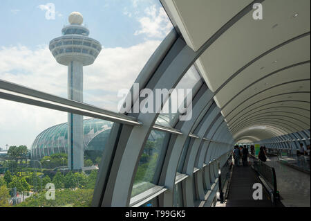 18.04.2019, Singapore, , Singapore - One of the two bridge connections to the new Jewel Terminal with the tower at Changi Airport. 0SL190418D019CAROEX - Stock Image