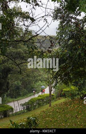 People walk along a remote road during the rain in the highlands of Papua New Guinea - Stock Image
