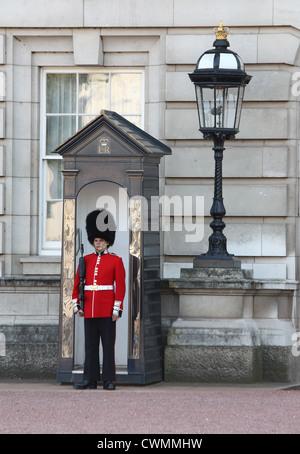 A sentry on duty outside Buckingham Palace - Stock Image