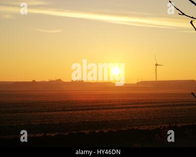 Scenic View Of Field Against Sky During Sunset - Stock Image
