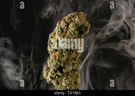 Closeup of green cannabis bud smoke as drug concept isolated on black background - Stock Image