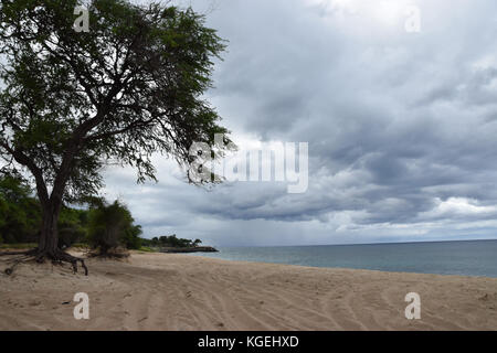 Nanakuli Beach - Oahu, Hawaii - Stock Image