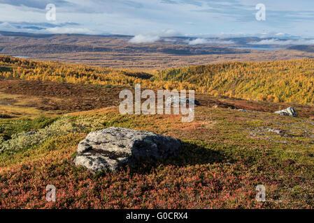 Autumn mountain landscape viewed from Kungsleden trail near Hemavan, Lapland, Sweden - Stock Image