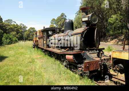 State Saw Mills steam engine SSM No. 2 slowly rusting away in a rail museum in Pemberton, Western Australia. - Stock Image