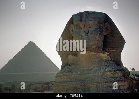 Sphynx, Giza Plateau, Cairo, Egypt, Africa - Stock Image