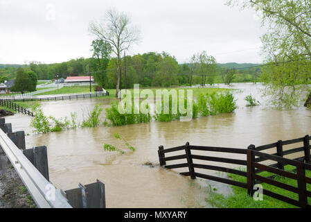 Streams overflow their banks caused by days of rain in Oak Ridge, Tennessee - Stock Image