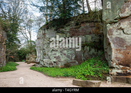 The quarry garden at Belsay Hall, an early 19th Century mansion house, in Northumberland, England, UK - Stock Image