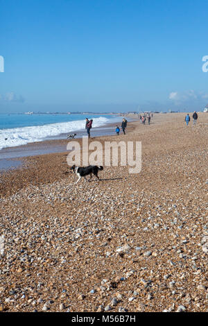 People and dogs enjoying the February sunshine on the beach at Hayling Island - Stock Image