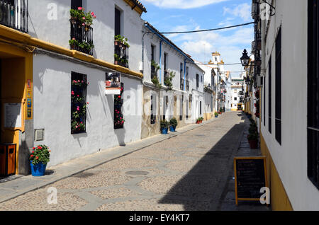 A street in the Centro District, Cordoba, Andalucia, Spain,Europe, - Stock Image