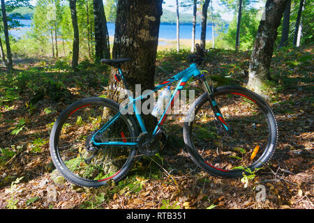 Mountain bike leaning against a tree in the forest with a lake partly visible in the background. - Stock Image