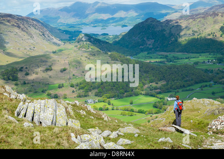 A female hiker taking in the view of Borrowdale while descending from the summit of Glaramara in the Lake District. - Stock Image