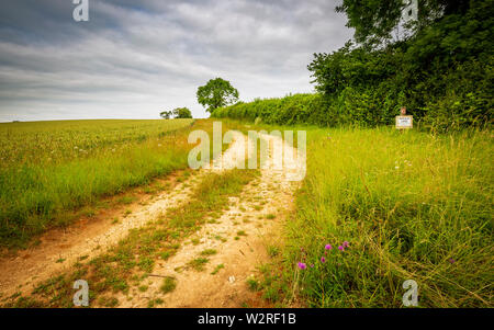 The track leading through a Cotswold field on a cloudy summers day - Stock Image