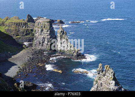 Spectacular basalt columns and sea cliffs near the RSPB's West Light Seabird Centre are an ideal  nesting site for puffins (Fratercula arctica), guill - Stock Image