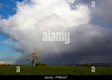 Newnham-on-Severn, Gloucestershire. 26th October 2018: UK Weather: Sunshine and slow moving showers over the Severn Valley near Newnham-on-Severn, Gloucestershire, UK. Credit Joseph Clemson, JY News Images/Alamy Live News - Stock Image