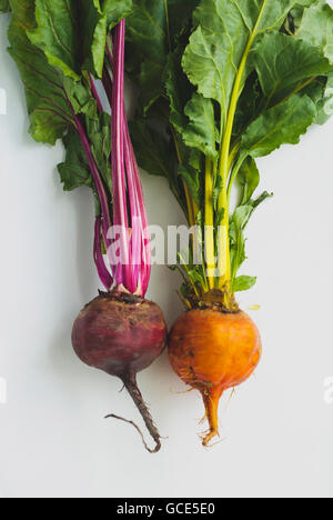 Red and yellow beets against on a white background - Stock Image