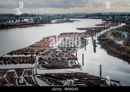 Log yards on the River Fraser. - Stock Image
