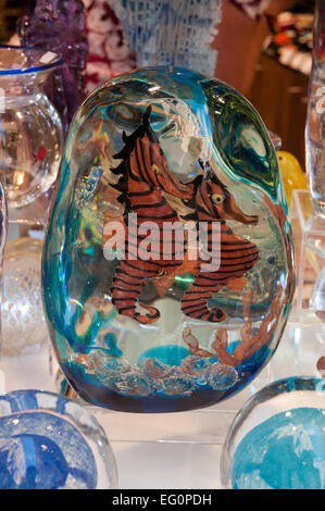 Murano glass artwork on sale in shop on Calle Lungha Venice Italy depicting Sea Horses in aquarium - Stock Image