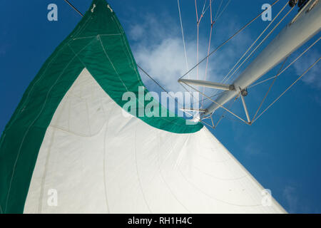 mainsail on board of a catamaran , blue ssky background - Stock Image