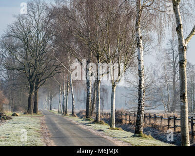 Rural road on a frozen winter day, Celle, Germany - Stock Image