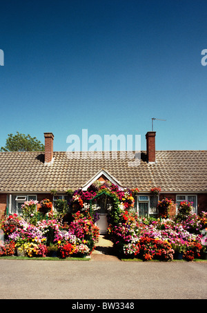 colourful garden with lots of flowers - Stock Image