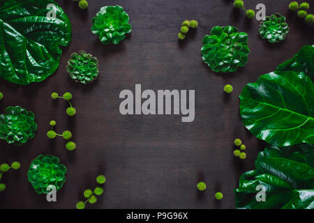 Fiddle Leaf Fig and Aeonium with Sycamore Pods, arranged with Space for Copy - Stock Image