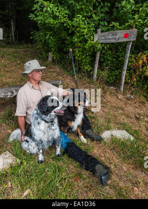 A walker taking a rest with his two dogs, beside a woodland footpath - Stock Image