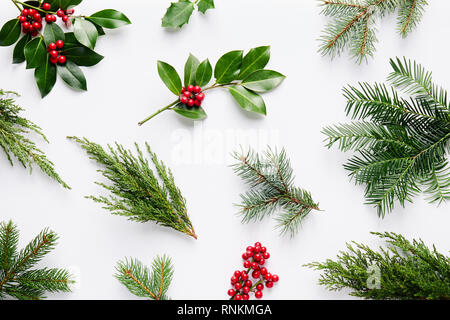 Collection of decorative Christmas plants with green leaves and holly berries. - Stock Image