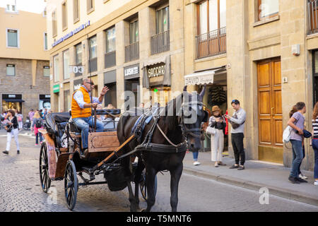 Horse and carriage in Florence provides city tours for visitors and tourists,Florence,Tuscany,Italy - Stock Image