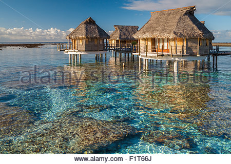 French Polynesia : Tikehau Pearl Beach water bungalows - Stock Image