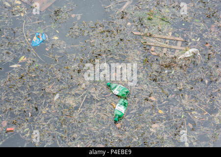 Plastic pollution in the river at Truro, Cornwall. - Stock Image