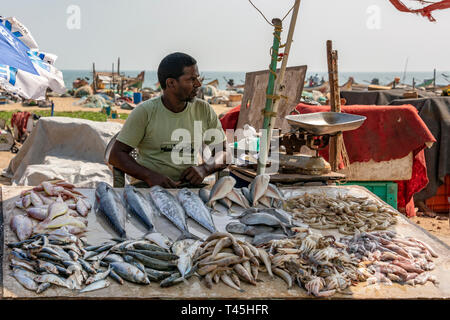 Horizontal portrait of a man selling fish at the Marina Beach fish market in Chennai, India. - Stock Image