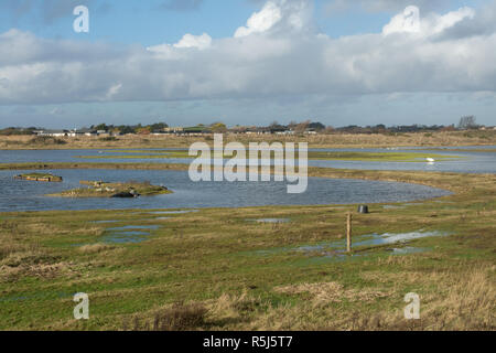 RSPB Medmerry Nature Reserve by the coast at Medmerry, West Sussex, UK. Looking across the stilt pools, birds, waterfowl. - Stock Image