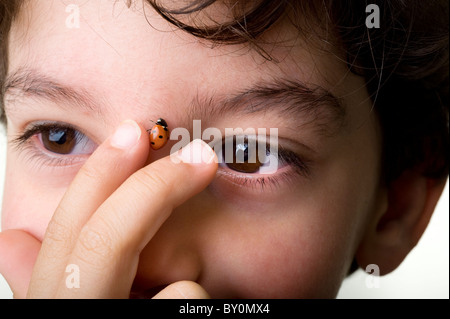 young boy touching a ladybug on his face - Stock Image