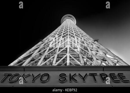 The Tokyo Skytree landmark, the highest free standing broadcast tower in the world and the tallest structure in - Stock Image
