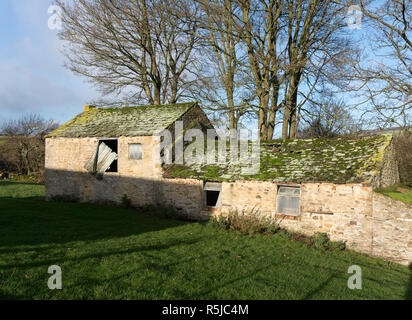 An old stone farm building near Frosterley, Weardale, Co. Durham, England, UK - Stock Image