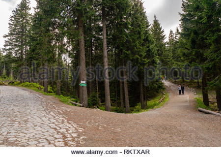 Karkonosze Mountains, Poland - May 9, 2018: Wide footpath with walking people along a green forest on a mountain during a cloudy day. - Stock Image