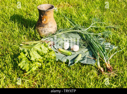 vegetables and eggs with brown jug on green grass on summer day closeup - Stock Image