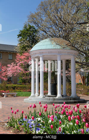 Old Well at the University of North Carolina, Chapel Hill, surrounded by Tulips and pink Dogwood. - Stock Image