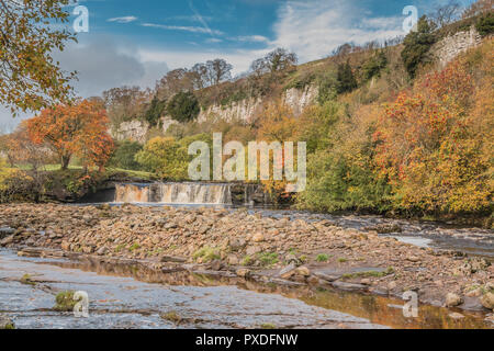 Yorkshire Dales National Park autumn landscape, vivid autumn colours at Wain Wath Falls, Swaledale, UK - Stock Image