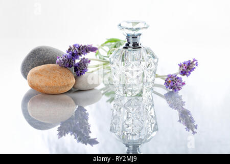A bottle of Lavender perfume next to some flowers with stones isolated on white. - Stock Image