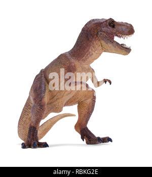 Roaring T Rex Dinosaur Isolated on White Background. - Stock Image