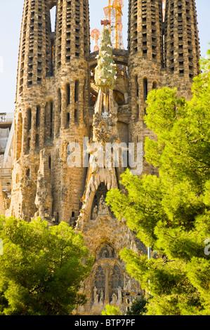 Sagrada la Familia Cathedral, Barcelona, Catalonia, Spain - Stock Image