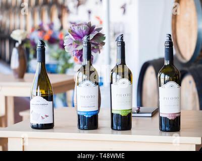 Setubal, Portugal - February 02, 2018: Wine tasting at Quita do Piloto in Setubal wine region, Portugal. - Stock Image