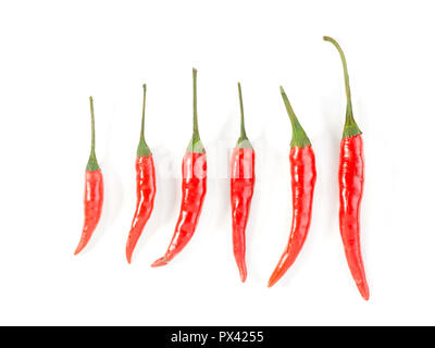 six red chillis on a white background - Stock Image