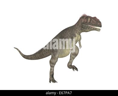 Dinosaurier Mapusaurus / dinosaur Mapusaurus - Stock Image